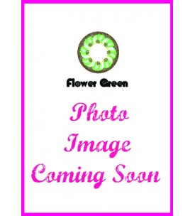 Barbie Lens 16.5mm - Flower - Green