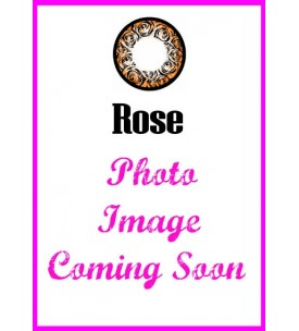 Barbie Lens 16.5mm - Rose - Brown