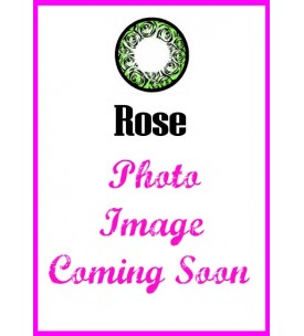 Barbie Lens 16.5mm - Rose - Green