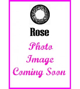 Barbie Lens 16.5mm - Rose - Grey