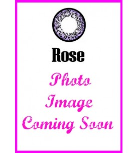 Barbie Lens 16.5mm - Rose - Violet