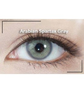 Western Eyes - Arabian Spartax - Grey -Power