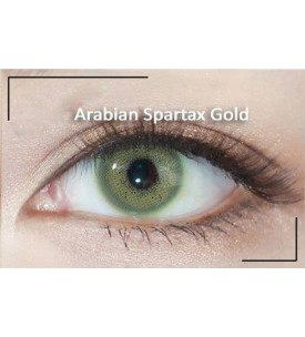 Western Eyes - Arabian Spartax - Gold - Power